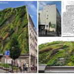 Nova Parede Verde de Patrick Blanc em Paris