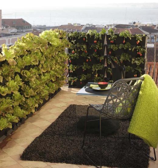 horta e jardim livro:Balcony Vegetable Garden Ideas