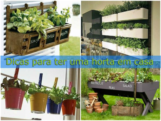 dicas para ter uma horta em casa