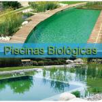 O que é uma Piscina Biológica – Veja exemplos.