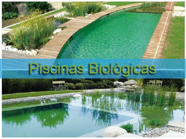 10 piscinas ecol gicas para inspirar e refrescar for Piscinas biologicas
