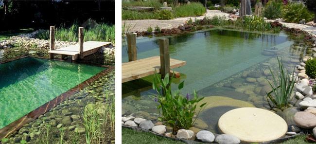 o que uma piscina biol gica veja exemplos sustentarqui