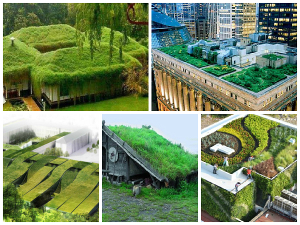 vantagens e desvantagens de um telhado verde