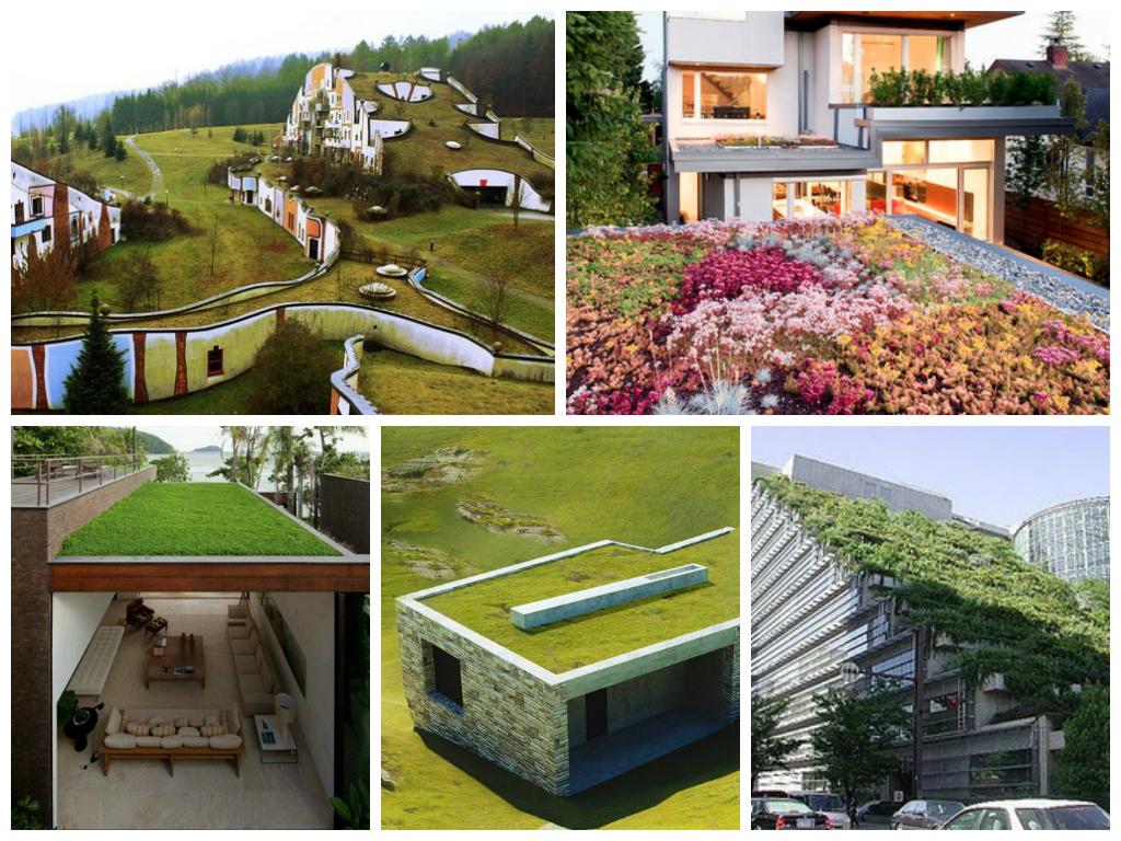 exemplos de telhados verdes