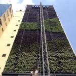 Movimento 90° – O verde subindo pelas paredes das cidades.