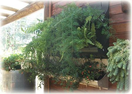 produto para parede verde