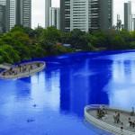 Imagina Recife sustentável e mais bonita…