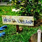 5 exemplos de Hortas Urbanas no Brasil