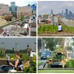 5 exemplos de Hortas Urbanas pelo mundo