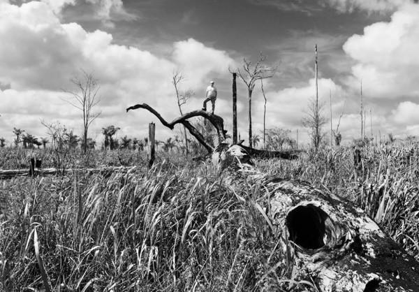 Hugo França transforma desperdício em ecodesign