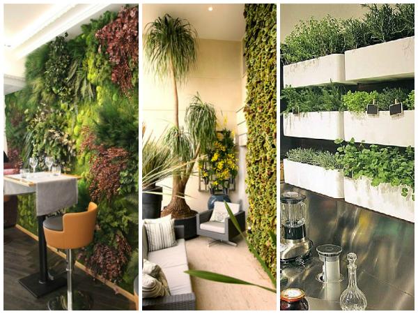 Decoração sustentável Verde