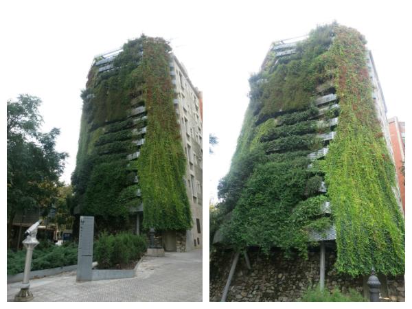 jardim vertical em Barcelona