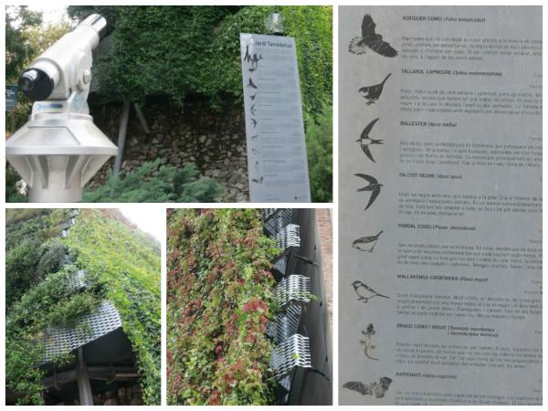 detalhes jardim vertical em barcelona