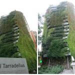 Jardim vertical em Barcelona tem até telescópio próximo para admirar sua beleza de perto