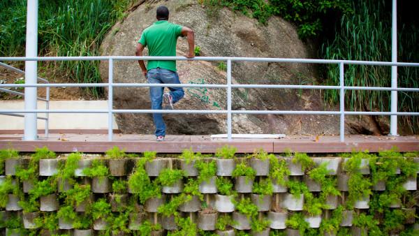 Morar Verde Carioca