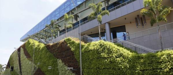 vantagens dos jardins verticais