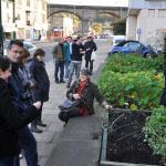 Cidade é tomada por hortas comunitárias