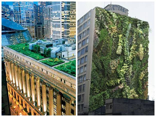 Telhado Verde -Prefeitura de SP e Jardim Vertical no Minhocão, instalado pelo Movimento 90