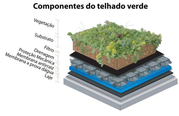 componentes dos telhados verdes