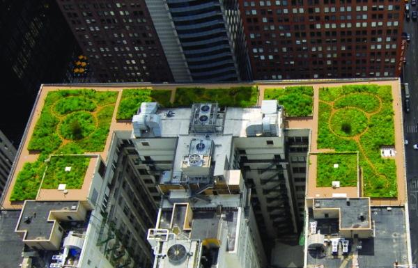 Telhado Verde em Chicago - combate as Ilhas de calor