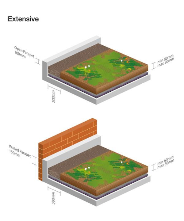 telhado verde-extensivo