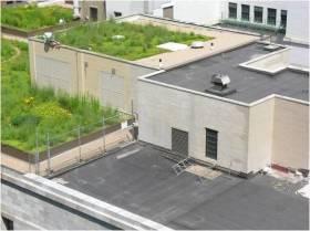 telhado-verde-foto-chicago
