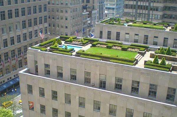 telhados verdes são sustentáveis
