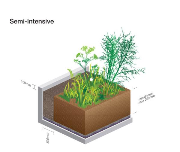 telhado verde semi-intensivo