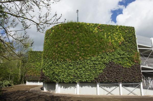 Maior jardim vertical