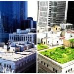 Iniciativa de Ilhas de Calor Urbana em Chicago