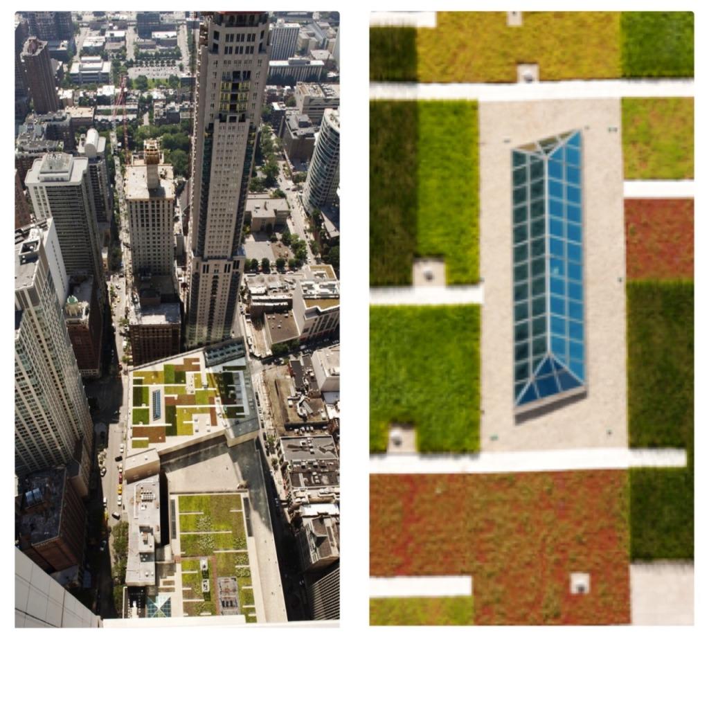 telhados verdes em chigaco