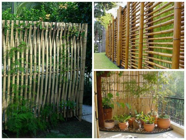 Tecidofeito de bambu  A fibra de Bambu é obtida da polpa do Bambu
