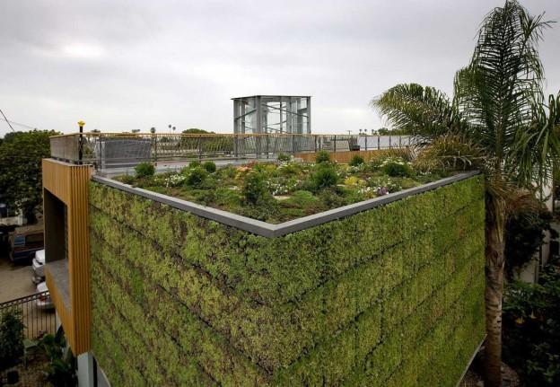 Reforma deixa casa mais verde e sustentável