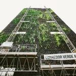 Minhocão inaugura o segundo jardim vertical do Corredor Verde