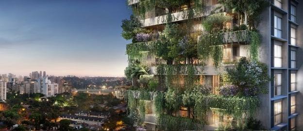 Floresta Vertical em São Paulo