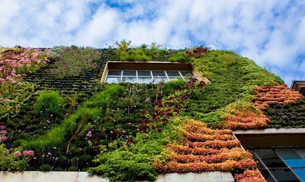 jardim vertical terraco:Jardim vertical resistente à seca compõe fachada de prédio em São