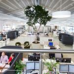 Mas afinal, por que melhorar o ambiente de trabalho das empresas?