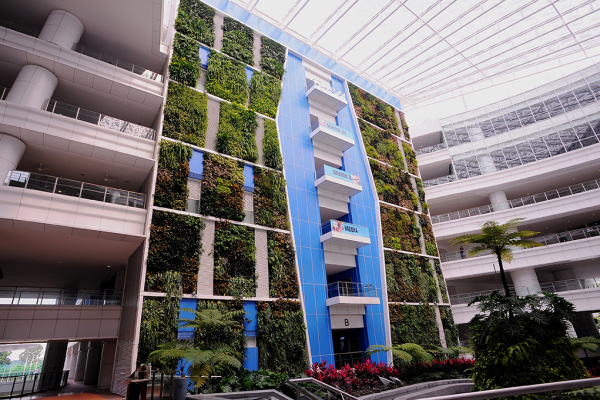 jardim vertical automatizado