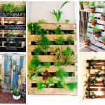 Ideias com paletes reutilizados: jardim e horta