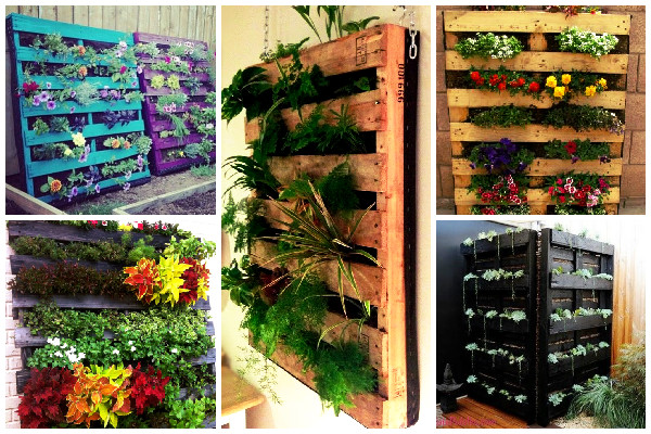 Ideias com paletes reutilizados jardim e horta -> Decoração Para Jardins Com Paletes