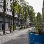 Paris mais verde: nova lei permite que qualquer pessoa possa plantar um jardim urbano