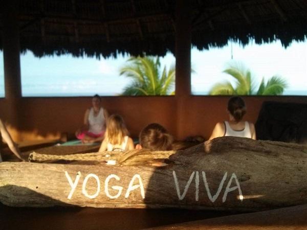 refúgio ecológico em bambu yoga