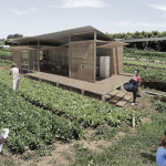 Projeto sustentável brasileiro ganha prêmio internacional