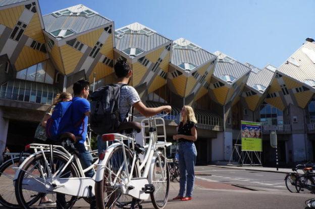 semaforos inteligentes para bicicletas roterda