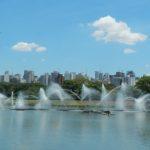 Despoluição dos lagos do Ibirapuera será feita por jardins filtrantes com plantas nativas