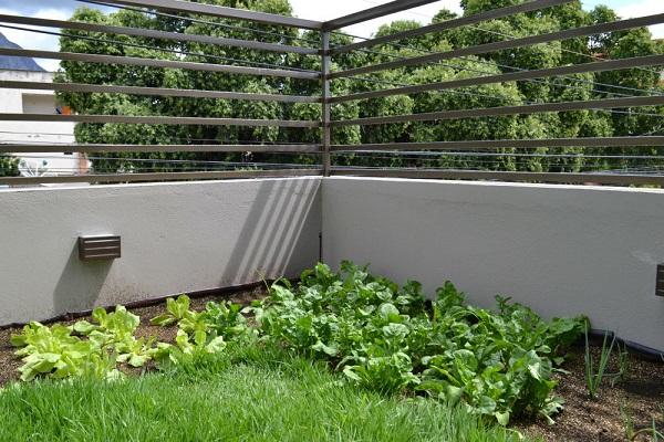 Primeiro edifício no Brasil a receber a certificação LEEDv4 horta