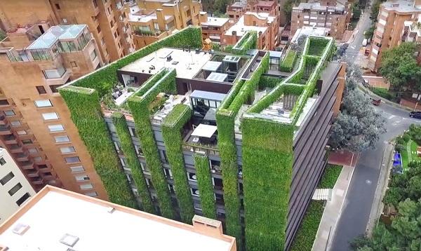 Resultado de imagem para jardins verticais urbanos ia Tendência: Jardins Verticais  Urbano - uma oportunidade para as nossas cidadesnternacionais