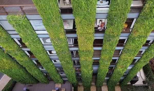 maior jardim vertical do mundo em Bogotá