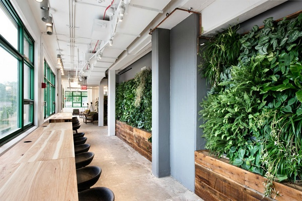 Projeto de interior Verde