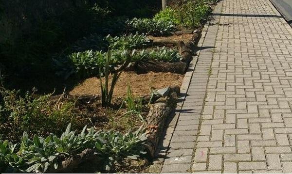 hortas em calçadas curitiba